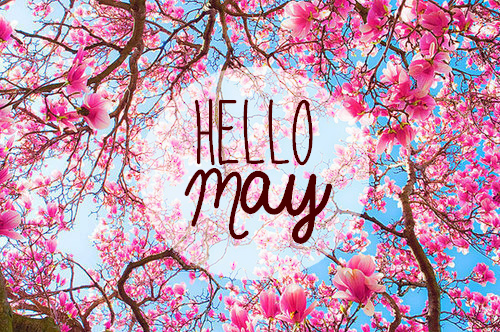 hello-may.png
